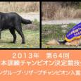 2013年10月に長野県霧ヶ峰にて行われた、日本訓練チャンピオン決定競技会で入賞を果たした子達を代表犬ページにアップしました。みんな一生懸命がんばりました! おめでとうございます!