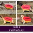 2016年度の愛知県警察嘱託犬に、ヴァルド君、ザウバー君が  認定されました!