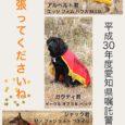 2018年度の愛知県警察嘱託犬に3頭が認定されました。